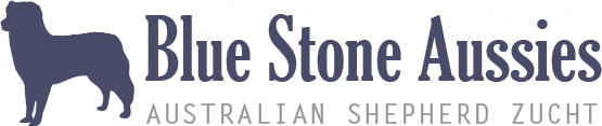 Blue Stone Aussies - Artgerechte Australian Shepherd Zucht in ländlicher Idylle