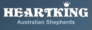 Heartking Australian Shepherds