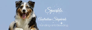Sparkle Australian Shepherds